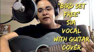 bird-set-free-thumb